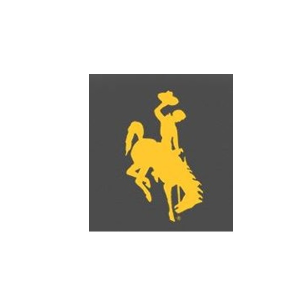 Wyoming  Steamboat Logo gold on black  600×600 image JPG