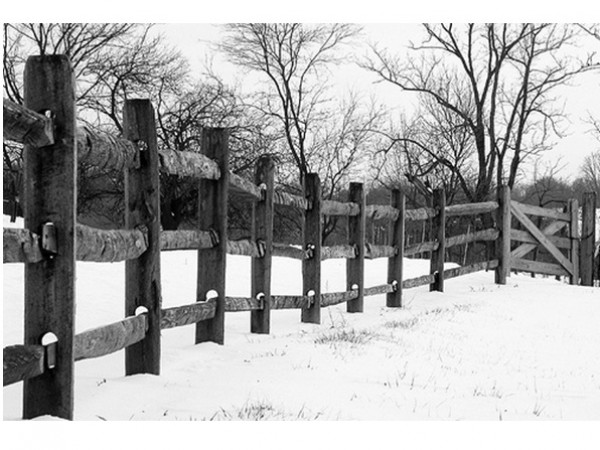 Amish rail fence  600×600 JPG